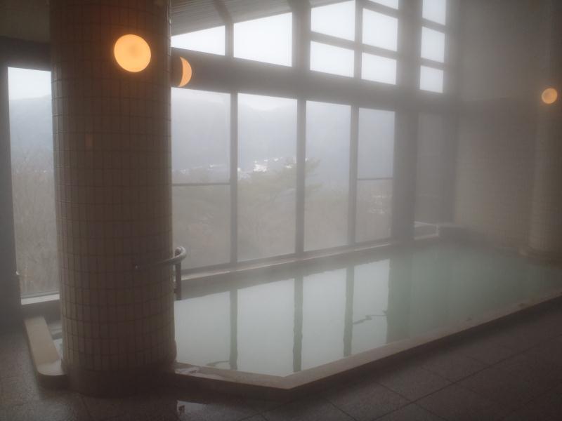 デイユースで楽しむ箱根の温泉プラン 仙石原温泉 ロッヂ富士見苑