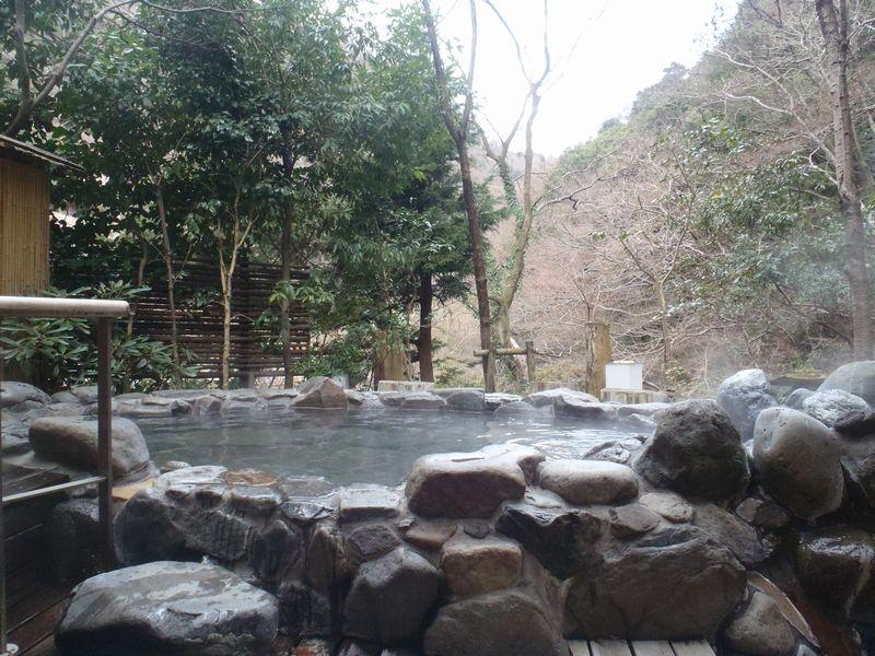 箱根で気軽に日帰り入浴を楽しめる 温泉ホテル 箱根湯本温泉 ホテル南風荘
