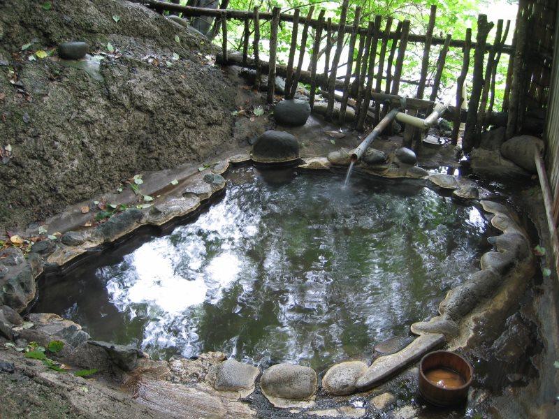 日本三大胃腸病の名湯に浸かる!峩々温泉【宮城県の温泉】