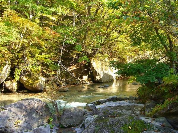 二岐温泉 大丸あすなろ荘 渓流沿いの露天風呂からの紅葉の景色