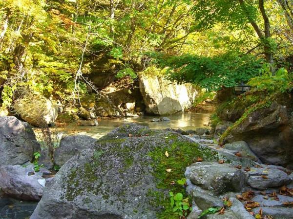 二岐温泉 大丸あすなろ荘 渓流沿いの露天風呂からの景色