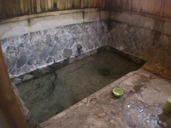 二岐温泉 大丸あすなろ荘 自噴の混浴内湯