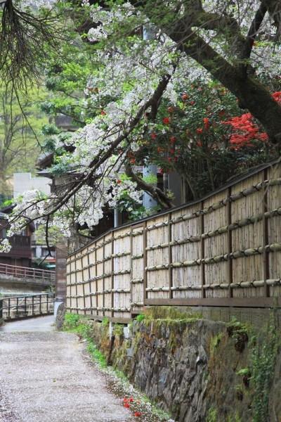 会津東山温泉 向瀧 外観 春