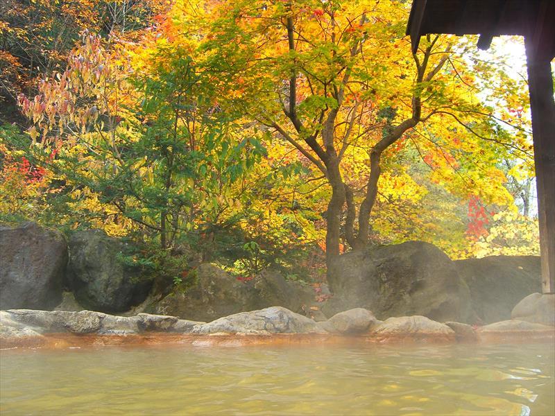 寸志で入れる森林が綺麗な温泉!平湯温泉 平湯民俗館 平湯の湯【岐阜県の温泉】